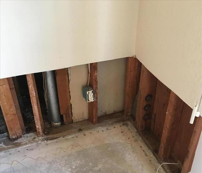 A North Hollywood, CA apartment with a big mold problem After