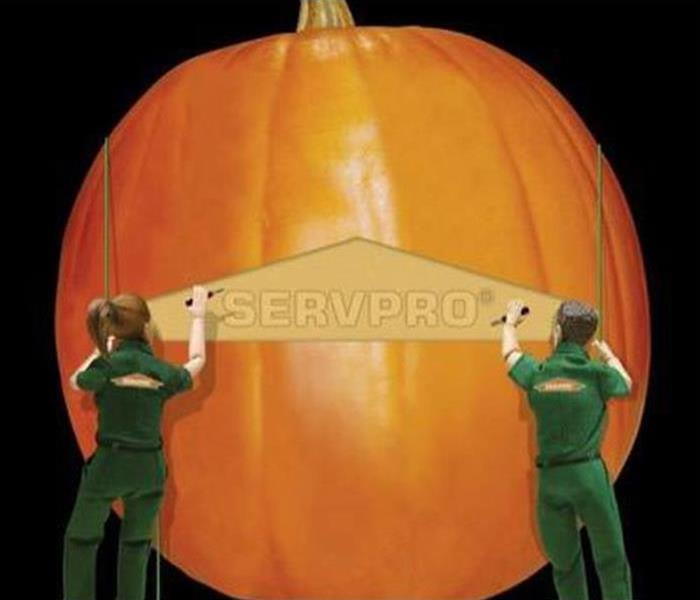 Mold Remediation Presever your Jack-o'-Lantern