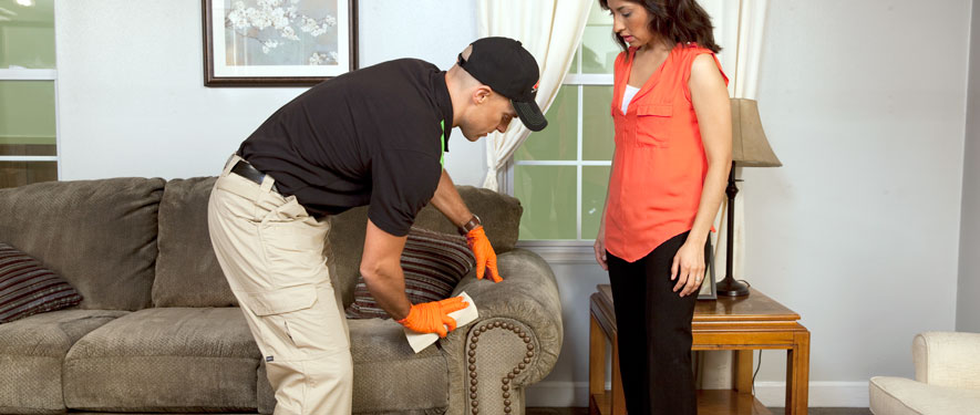 Chatsworth, CA carpet upholstery cleaning